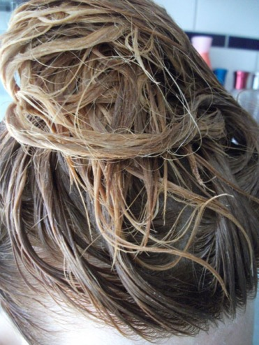 Lighten those locks diy blonde at home that cheap bitch apply to your hair from ends to roots you will instantly see smell it working solutioingenieria Image collections
